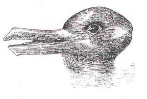 Jastrow's Duck Rabbit, 1899